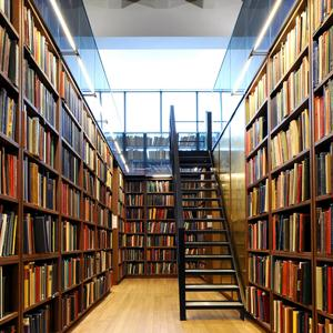 Библиотеки Гурского